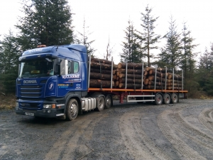 Two drivers out in wild Welsh forests!